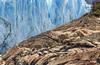 Texturas ... (Marcelo Las Heras) Tags: abstract agua glaciar glacier hielo ice iceberg montain montaña moreno perito piedra roca rocks stone texturas texture water