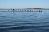 Rowing practice (danielhast) Tags: madison lake mendota canoe rowing