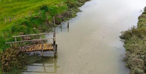 mini pont de Mai