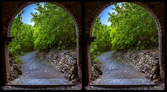 Twisted path 3-D / CrossView / Stereoscopy / HDRaw (Stereotron) Tags: sachsenanhalt saxonyanhalt ostfalen harz mountains gebirge ostfalia hardt hart hercynia harzgau europe germany deutschland quietearth crosseye crossview xview pair freeview sidebyside sbs kreuzblick 3d 3dphoto 3dstereo 3rddimension spatial stereo stereo3d stereophoto stereophotography stereoscopic stereoscopy stereotron threedimensional stereoview stereophotomaker stereophotograph 3dpicture 3dimage twin canon eos 550d yongnuo radio transmitter remote control synchron kitlens 1855mm tonemapping hdr hdri raw