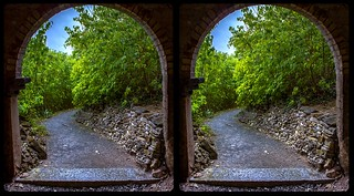 Twisted path 3-D / CrossView / Stereoscopy / HDRaw