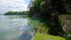 Le Jaudy (claude 22) Tags: rivière river jaudy plouguiel brittany bzh breizh côtes armor bretagne france kestellic