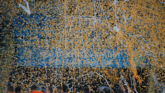 BOG06477 (anton.bogodvid) Tags: sonya7m2 beroflex beroflex500mmf8 football ukraine dinamo shakhtar stadium fire fireshow fan fans cup