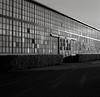 Portland (austin granger) Tags: portland oregon windows light geometry reflections street sidewalk hedge film diagonal gf670
