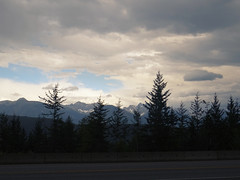 DSC01555 (RD1630) Tags: onthewaytogolden bc canada summer2017 britishcolumbia kanada nordamerika north america outside outdoor road travel trip roadtrip reise wald berge mountains