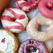 Holey Moley Doughnuts