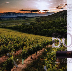 Bock Pince Dűlőről Dűlőre; 2016_2, Villány, Hungary (World Travel Library - collectorism) Tags: bock 2016 wine wein bor vinery vineyard vino gastronomy villány villany baranya hungary magyarország ungarn hospitality brochure worldtravellibrary worldtravellib holidays tourism trip touristik touristisch vacation countries papers prospekt catalogue katalog photos photo photography picture image collectible collectors collection sammlung recueil collezione assortimento colección ads gallery galeria touristische documents dokument broschyr esite catálogo folheto folleto брошюра broşür