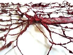 in my head I am free (detail) (Ines Seidel) Tags: newspaper news paper altered fiberart paperart thread yarn sewing red ink zeitung zeitungspapier tusche garn nähen nähmaschine benäht text überschrift