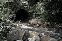 Voyage en Espagne 2018   0439 (Distagon12) Tags: rio river riviere eau water agua nature sauvage wild landscape asturias salas longexposure longuepose