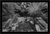 Puntagorda, La Palma, Sony A7R IR with Voightländer Heliar Hyper Wide 10mm/5.6 (Bartonio) Tags: modified 720nm infrared