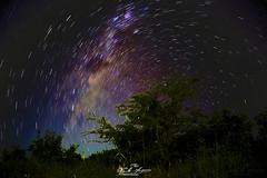 ROTAÇÃO_UNIVERSAL_NACALA_MOÇAMBIQUE (paulomarquesfotografia) Tags: paulo marques sony a7 takumar 28mm f35 full frame fullframe astro astrofotografia noite night darkness dark escuro escuridão estrelas stars nacala moçambique mozambique