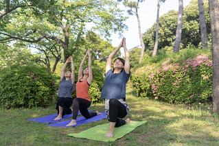 Female friends practicing yoga at public park