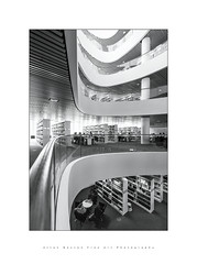 Artful Learning.. (LoneWolfA7ii) Tags: atrium art architecture aberdeen books black bw blackandwhite knowledge library monochrome mono sony scotland university visitscotland view white curves light