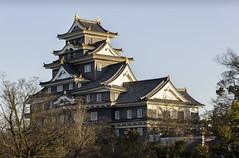 Okayama castle (Sacule) Tags: 岡山城 okayamajō 烏城 金烏城 okayamacastle japan prefecture honsu asia japon nippon old 1597 canon600d sigma1770 korakuengarden 2017 winter travel architecture