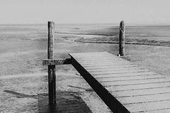 Blick ins Leere // Look into the void (Zoom58.9) Tags: natur landschaft holz watt monochrom nature landscape wood wadden monochrome canon germany