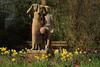 Blumenpflücker (17) (Rüdiger Stehn) Tags: 2018 europa kunst skulptur mitteleuropa deutschland germany norddeutschland schleswigholstein bauwerk stadt profankunst kunstwerk plastik keramik 2000er esmarchstrase blumenpflücker 2000s kielravensberg canoneos550d kiel rüdigerstehn alwinblaueartist esmarchstrasekiel