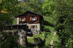 Planuit (bulbocode909) Tags: valais suisse planuit chalets sentiers arbres forêts printemps vert hameaux murs montagnes nature