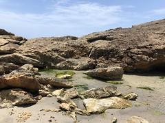 Aruba 2018 (sarah.shelmidine) Tags: aruba natural bridge palm treees tree beach white sand pool chapel