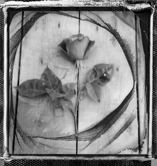 croix (mariobattaglia) Tags: polaroid polaroidfilm pola sx70 impossible impossibleproject instantfilm istant instantfilmcolor mariobattaglia