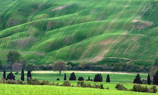 *The green rolling hills of Tuscany*