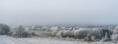 im Winter II (ernst.koeppel) Tags: winter winterlandschaft frost raureif marktredwitz landscape landschaft nature natur city stadt fichtelgebirge oberfranken bavaria bayern
