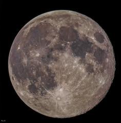 Full Moon. May 1, 2018 / Полнолуние на Первомай (BogKY) Tags: 2018 май may весна spring bogky sonyalpha7r2ilce7rm2apscmode celestronnexstar4se telescope rawstackingsoft remotecontrolunitrcc5 forkarmfromcelestronnexstar4seineqmode астрофото астрофотография astrophoto astrophotography fragmentsoft moon луна fullmoon полнолуние