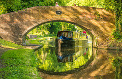 The Staffordshire & Worcestershire Canal (At Stourton ) (williamrandle) Tags: stourton kinver stafforshire england uk summerspring 2018 staffordshireworcestershirecanal canal waterways towpath bridge arch narrowboat brick reflections green outdoor landscape beauty serene peaceful nikon d7100 nikon50mmf18g tree trees grass water boat