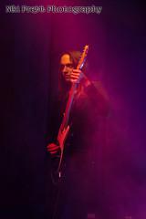 IMG_5421 (Niki Pretti Band Photography) Tags: band concertphotography liveband livemusic livemusicphotography music nikiprettiphotography scottyoder ivyroom canon canon5d canonphotos canonphotography