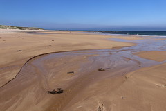 St Combs Beach_may 18_647 (Alan Longmuir.) Tags: stcombsbeach grampian aberdeenshire stcombs