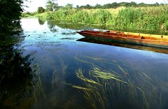 Grantchester punts (RoryO'Bryen) Tags: light england nature water reflections reeds landscape boats peace tranquility rory rivers stunning punting cambridgeuk grantchestermeadows obryen roryobryen roarsthelion whatalandscape copyrightroryobryen