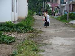 banna greg 022 (greginchina) Tags: yunnan xishuangbanna