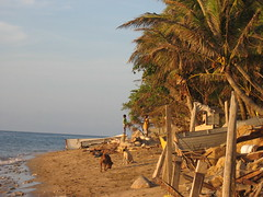 Murray Island Beach