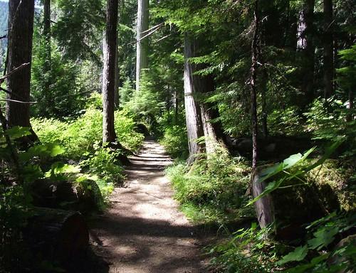 pad naar Cheakamus Lake