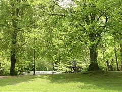 P5190324 - public garden in Gdansk (1)