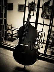 double bass (BFSH) Tags: blackandwhite bw music digital still mood bass musicalinstrument doublebass explore12sep06