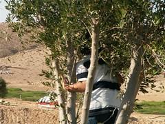 PICT5644 (jonklinger) Tags: israel king martin visit negev hebrew 3rd luther ramat klinger maayan ml3 20060914 lafdej haneurim