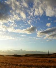 Near Steptoe (stormyafternoon) Tags: sky clouds wheatfields easternwashington steptoe