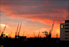 Waalhaven (Day_C) Tags: pink sunset shadow red orange haven silhouette yellow zonsondergang rotterdam dayc cranes rood industrie skyplay kranen smit waalhaven rotjeknor smittak