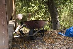 Retireve It (misterken) Tags: garden weeds ken selfportraits compost vegetablegarden raisedbedgarden dijemry misterken