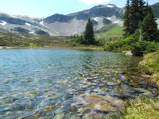 meertje onderweg naar Flute Summit