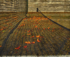 . Out Of Season II . (3amfromkyoto) Tags: autumn leaves court out season tennis deserted tenniscourt 3amfromkyoto flickr:user=3amfromkyoto