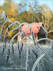 Frost and Sun: October Morn