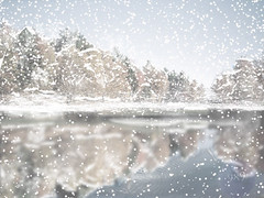frozen lake (Gravityx9) Tags: christmas winter lake holiday snow tree ice water weather photoshop season hearts chop xmastime smorgasbord froze creativephoto 060706 psfo oradaydm photographersgonewild sensationalcreations flickrgiants