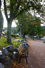 Titisee (linolo) Tags: germany europa europe  titisee