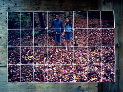 Street Photo Installation (Musical Mint) Tags: city autumn streetart toronto art fall leaves photography photo gallery sidewalk artists installation posters local anonymous musicalmint