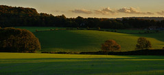 the joy of last light (algo) Tags: light sunset green field clouds photography topf50 topv555 bravo shadows searchthebest quality topv1111 chilterns topv999 fields topv777 algo topf100 100f halton 61006 thehale magicdonkey outstandingshots specland abigfave saariysqualitypictures