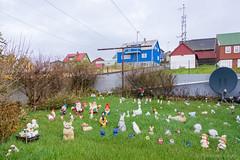 Nolsoy (Photocedric) Tags: garden faroe danmark iles danemark gnome islands town island city feroe denmark europe september dk nólsoy faroeislands fo
