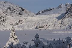 Mendenhall Glacier and Lake Frozen (Gillfoto) Tags: glacier juneau alaska mendenhall frozenlake walkers winterwalkers snow snowcappedpeaks