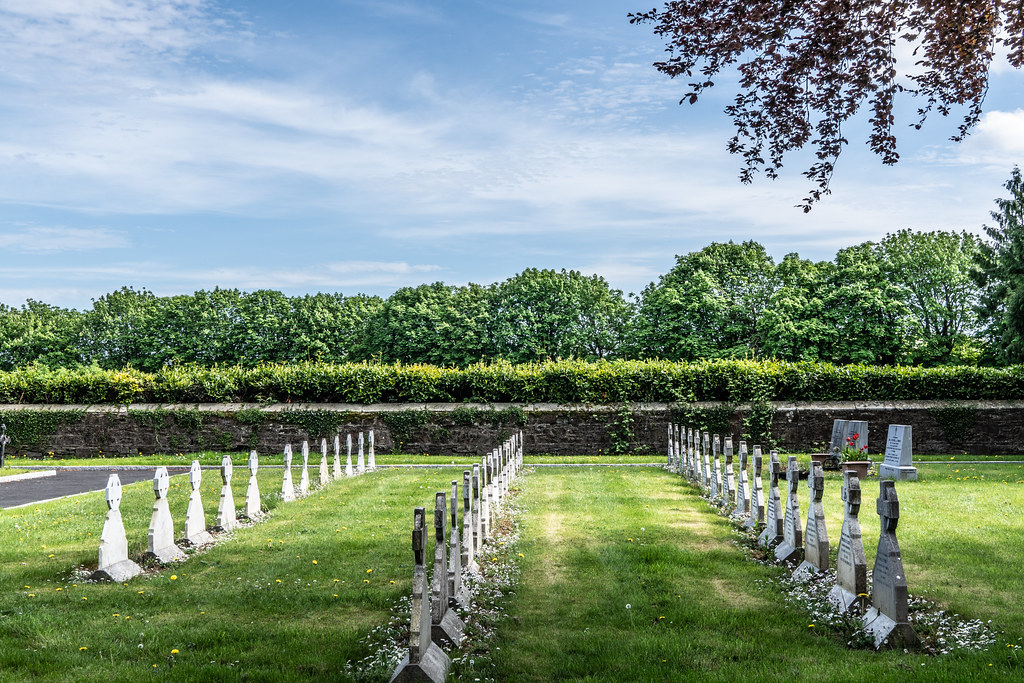 ST. PATRICK'S COLLEGE CEMETERY IN MAYNOOTH [SONY A7RIII IN CROP SENSOR MODE]-139539