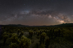 Cholla Cactus Garden Milky Way Panorama (RyanLunaPhotography) Tags: california fuji fujifilm joshuatree nationalpark socal southerncalifornia xt2 astrophotography cactus desert landscape milkyway night nightscape rokinon 21mm